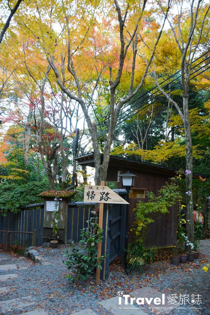 《京都賞楓景點》祇王寺:嵐山靈秀雅緻的紅葉庭園