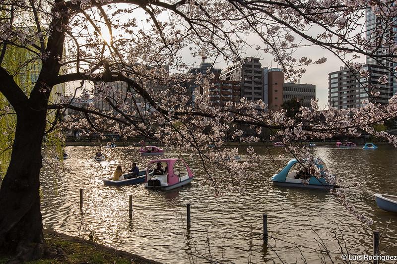 Ueno-Park-69