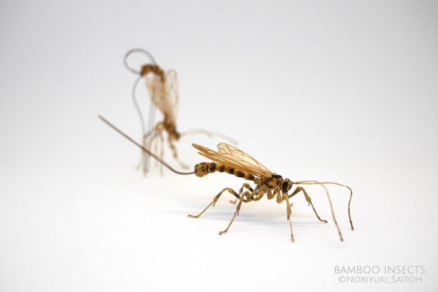 37139009434_97c1267ae6_c Highly Detailed Realistic Insects Crafted Out of Bamboo Random