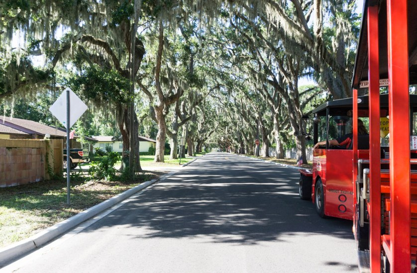 Taking a Tour on Red Train Tour - Dog-Friendly St. Augustine, Fla., July 15 - 16, 2017