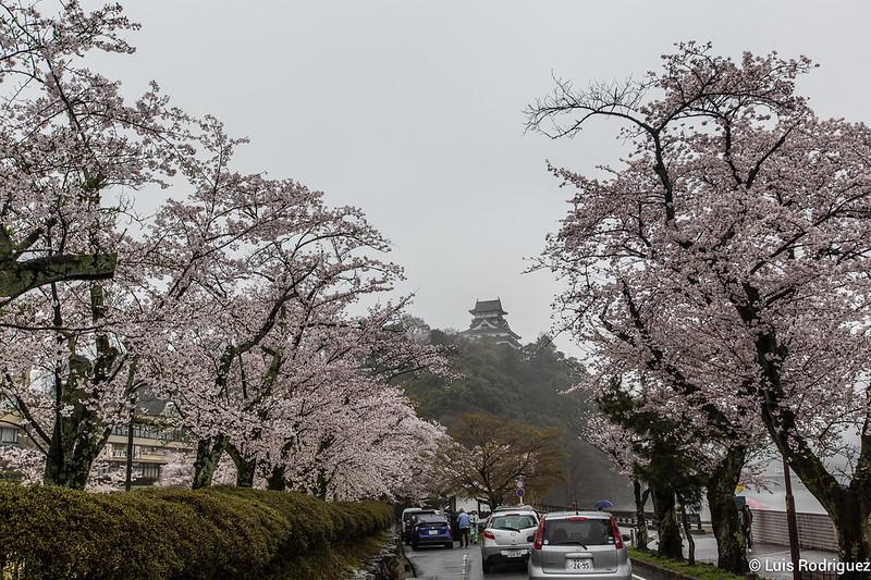 Inuyama-castillo-167