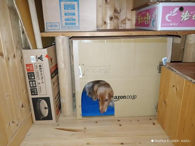 ハリーポッターより貧相な階段下の部屋を作った (4)