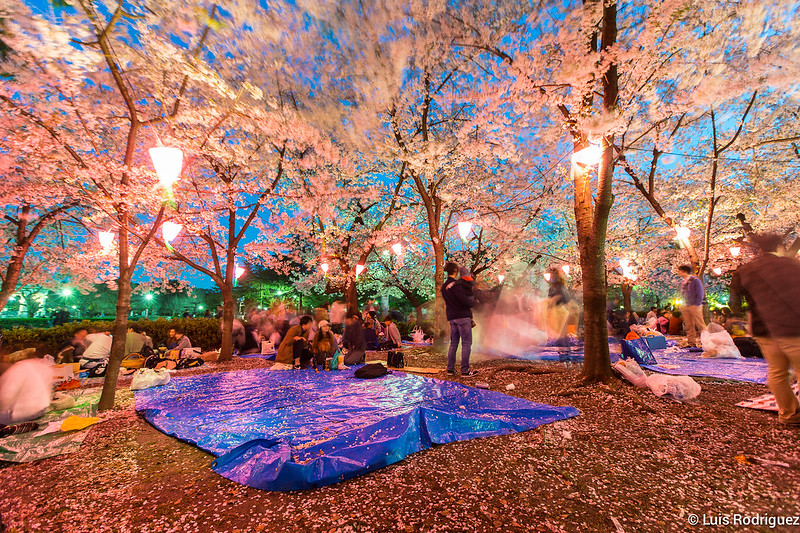 Parque-Tsuruma-Nagoya-25