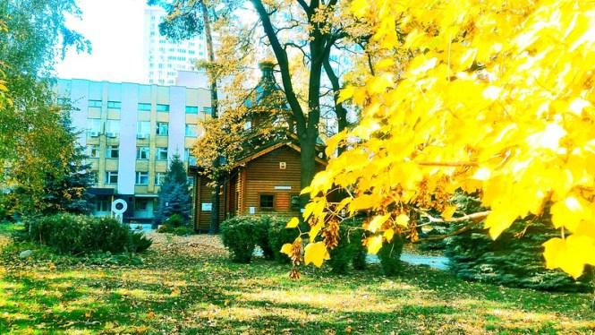 2017 10 22 Golden foliage around Temple