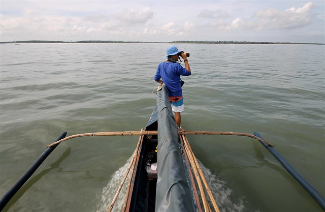 Searching for Irrawaddy Dolphins