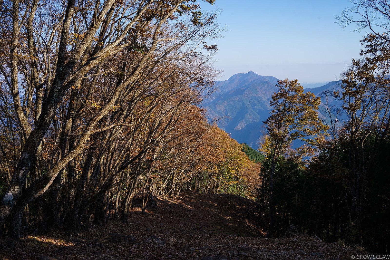 2017.11.05 鷹ノ巣山