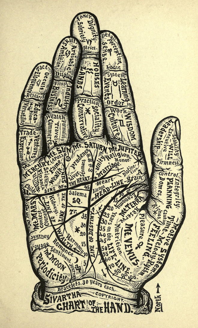 Chart of the hand by Alesha Sivratha