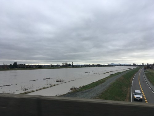 Flooded Skagit River