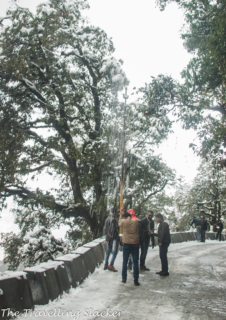 Mussoorie Winter (20)