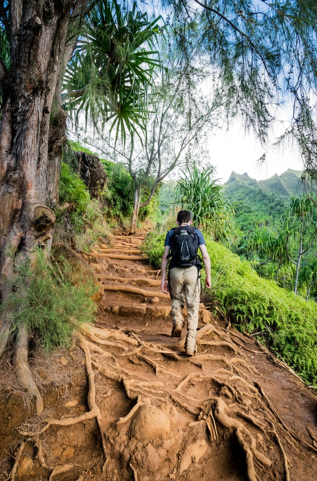 the kalalau trail is steep and slippery, but the views make it all worth it