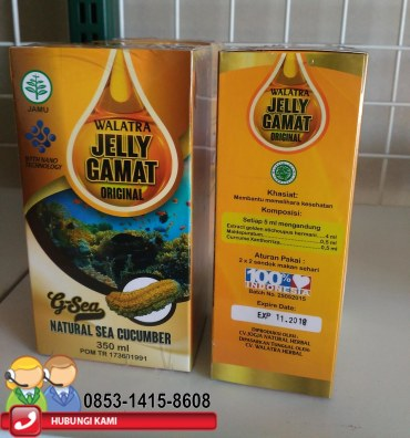 Pusat Obat Herbal Alami Walatra Jelly Gamat Original
