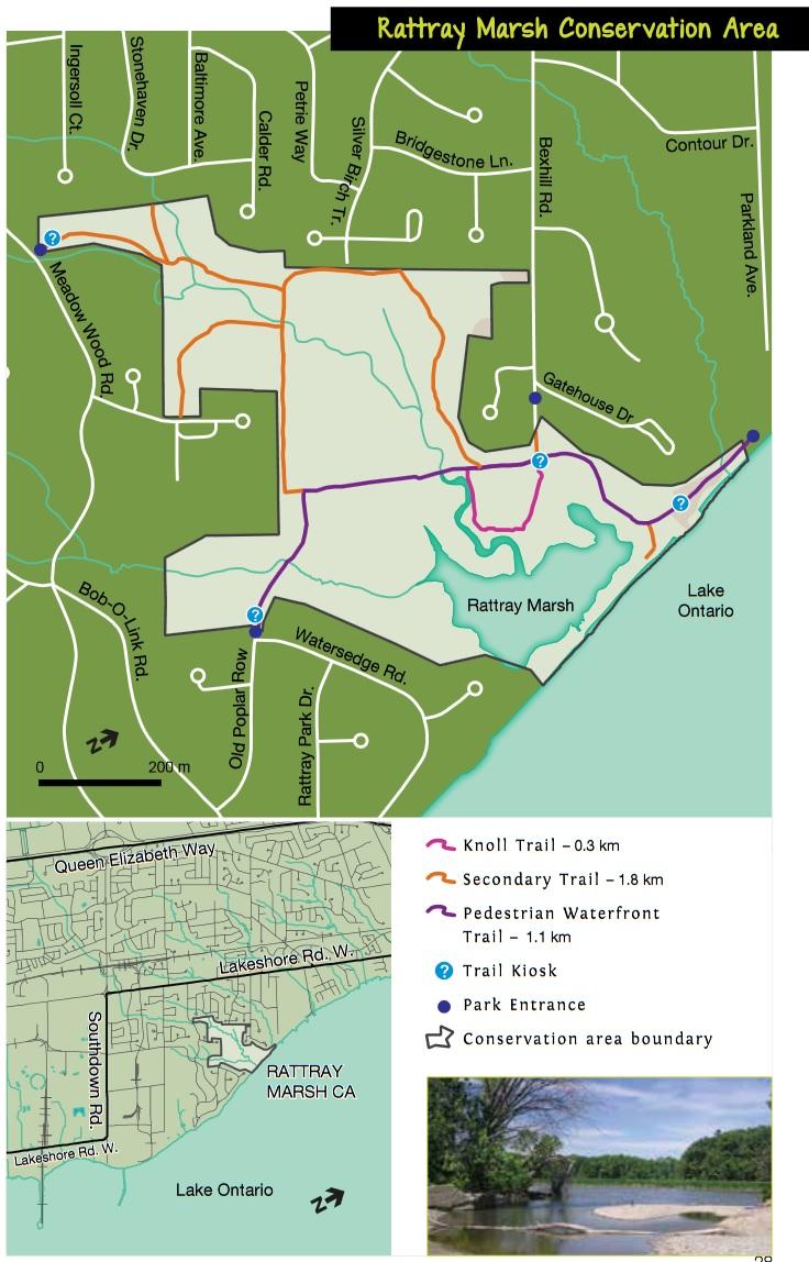 Rattray Marsh Trail Map