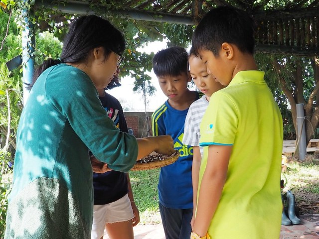 水林小秧自然農場 (6)