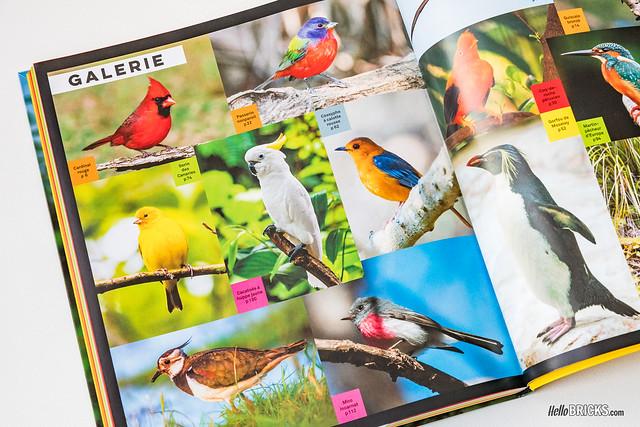 Livre LEGO Birds 06