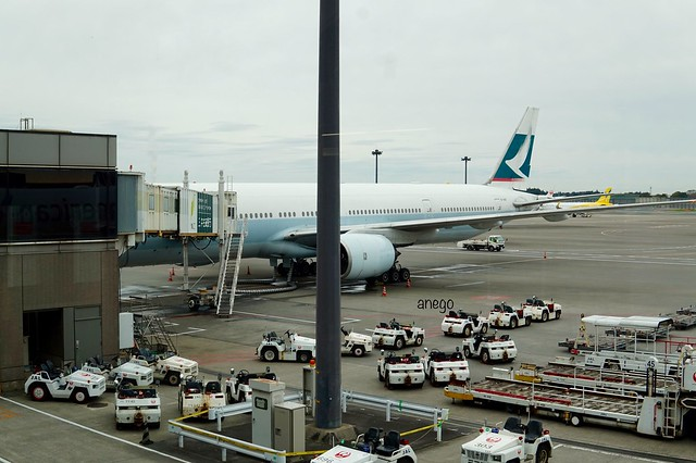 CX509 香港行き