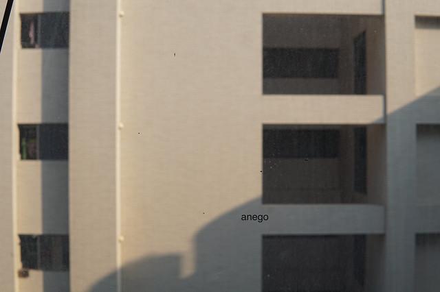 シャトーデシン 窓の外