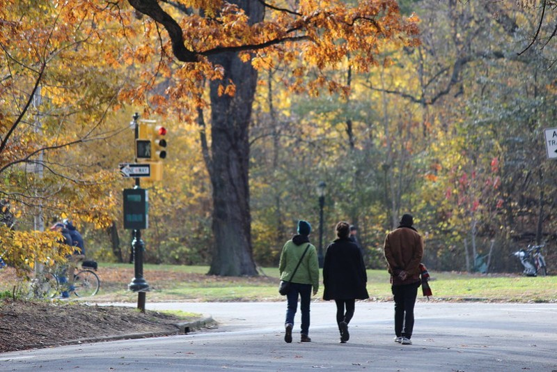 Prospect Park Fall Foliage