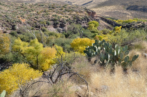 Gila Box Riverview Campground more down the valley