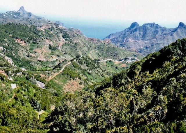 Que ver en Tenerife003