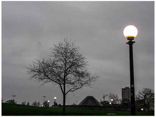 Tree, Light and Plane