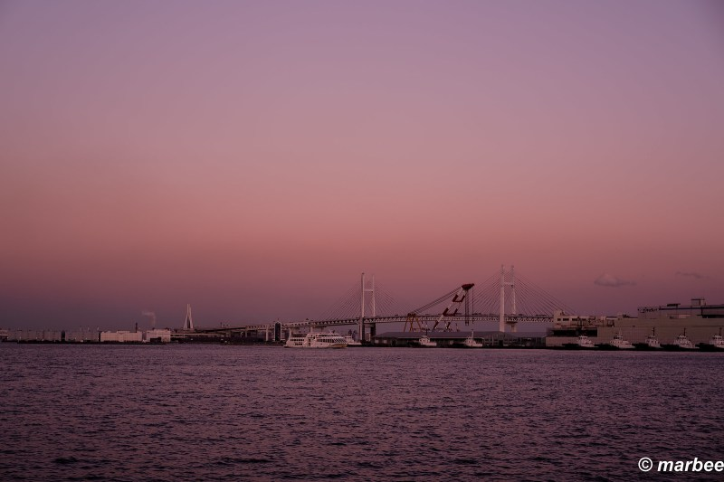 Dusk of the harbor