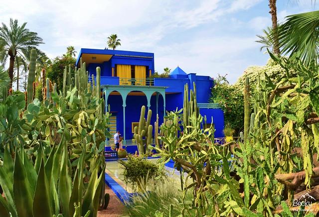 Marrakesh/Marrakech Guide - Jardin Marjorelle in Marrakesh, Morocco