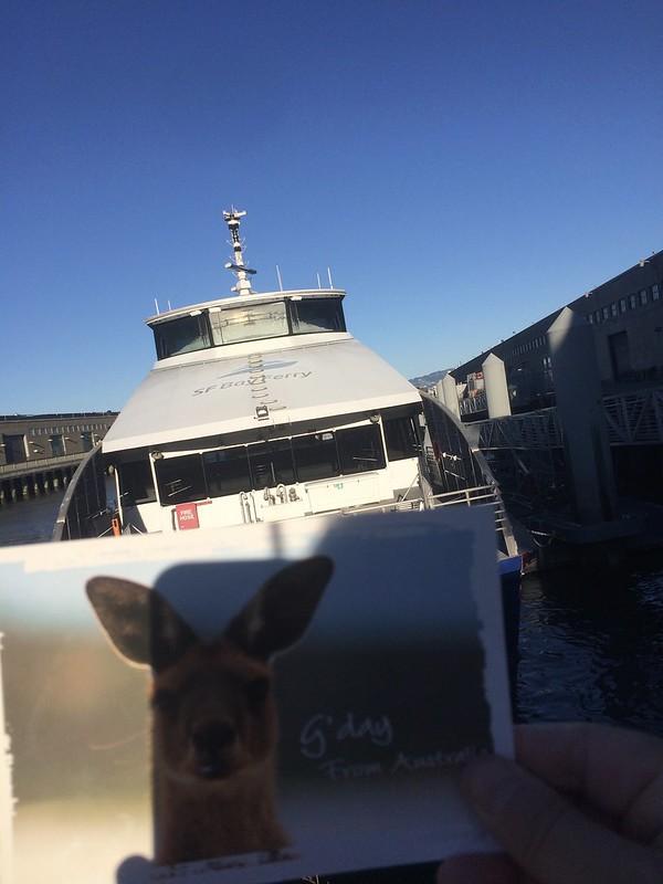 Postcard selfie 3
