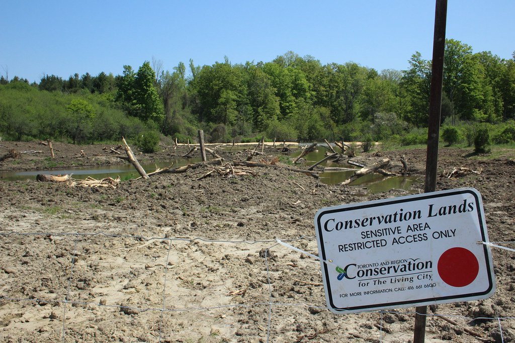 Throwback 2016 - Claireville Conservation Area