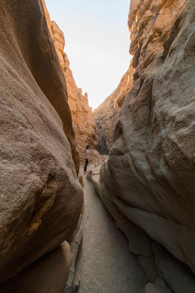 02.17. Anza Borrego Desert State Park