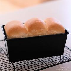 ハナマンテンの食パン 20180306-DSCT6192 (2)