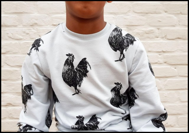 rooster sweater