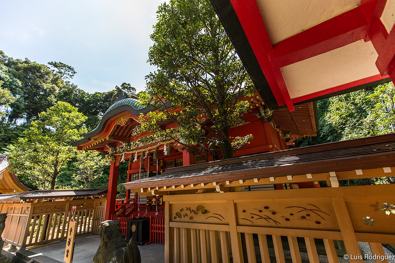 Excursion-Enoshima-Japon-47
