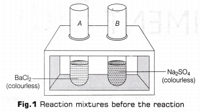 cbse-class-10-science-lab-manual-types-of-reactions-2