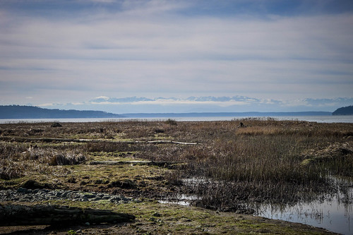 Skagit Wildlife Area-002