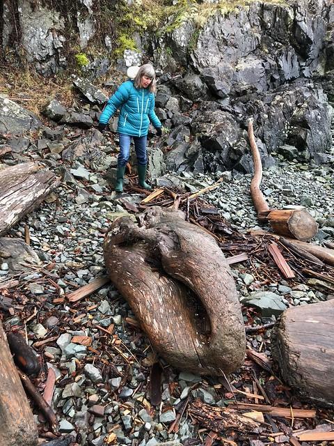 Nanaimo - big driftwood and linda