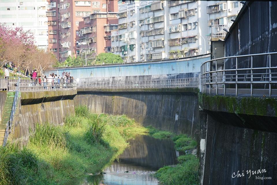 基隆河畔自行車道20.JPG