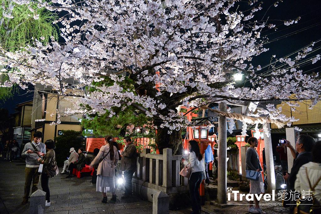 《京都賞櫻景點》祇園白川夜櫻:成為絕響的點燈賞櫻活動