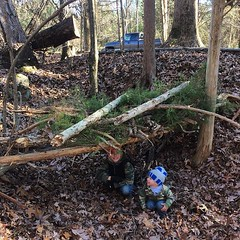The pigs may never use this shelter, but the kids had fun building it! #farmkids #familyfarm #goodtimes #farmlife #goodfarmstuff