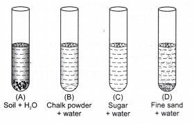 ncert-class-9-science-lab-manual-solution-colloids-suspension-15