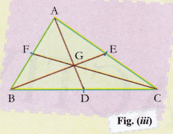 ncert-class-10-maths-lab-manual-centroid-triangle-3