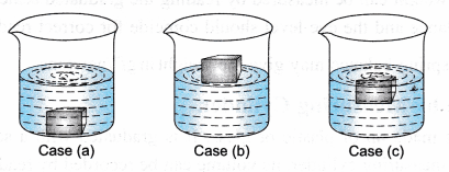 ncert-class-9-science-lab-manual-density-of-solid-1