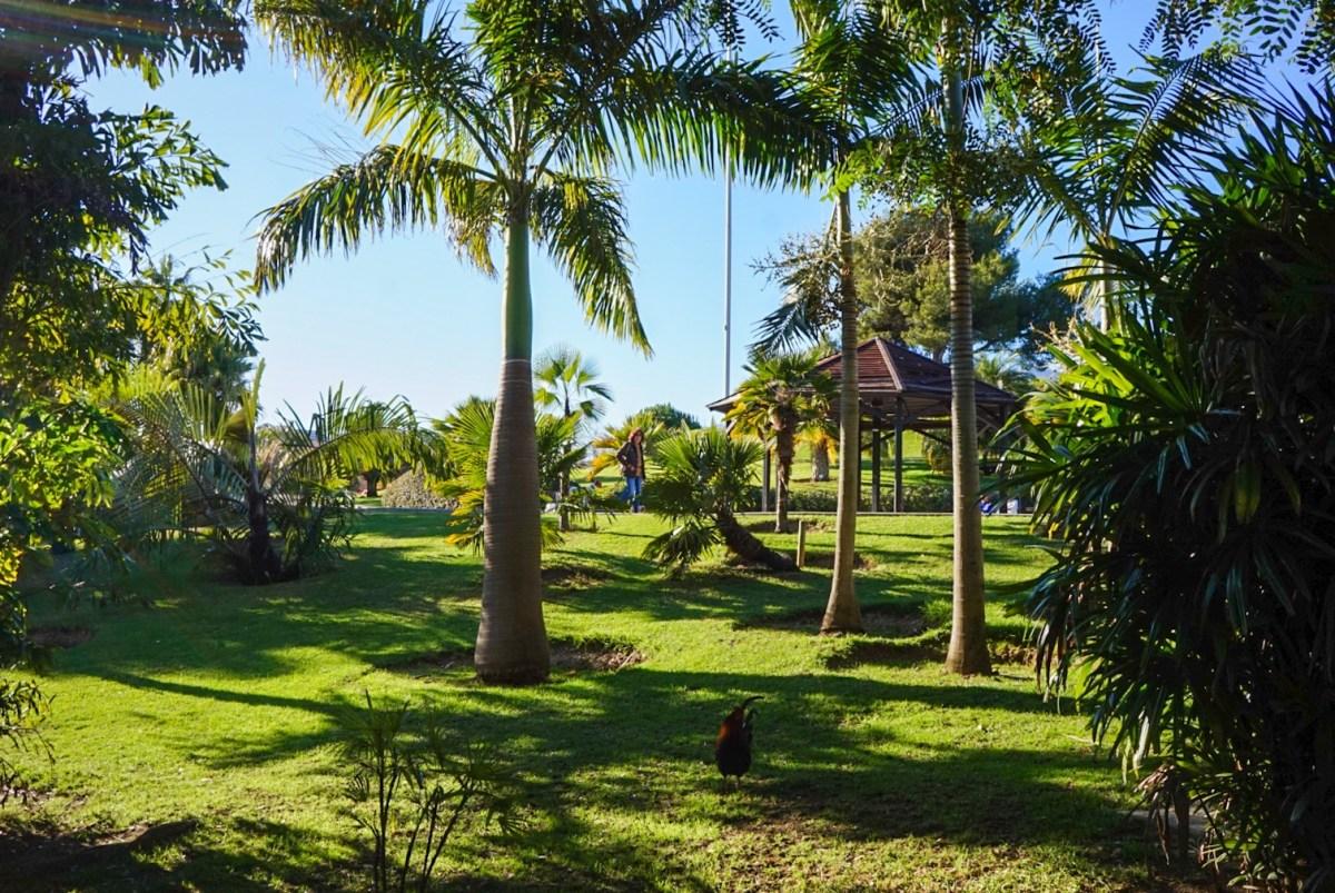 Benalmádena, Costa del Sol