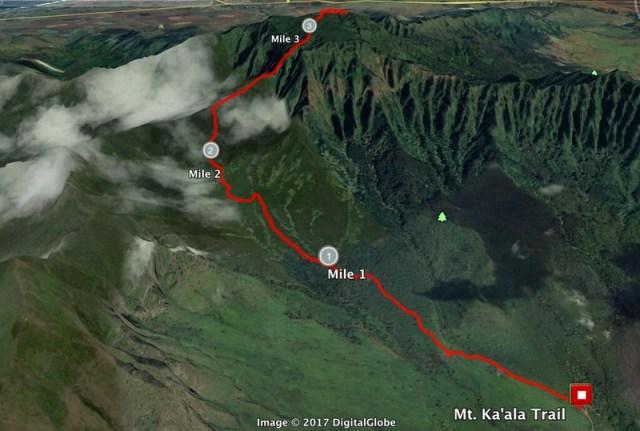 Mt. Kaala Google Earth 1