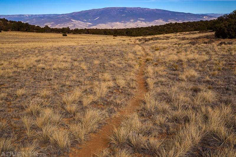 Trail To The Grand Mesa
