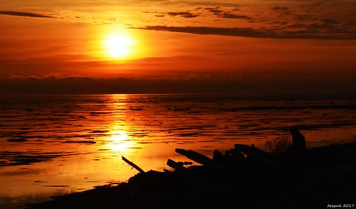 Sunset at boundary bay dyke