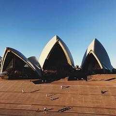 #sunset #light on the steps of the #operahouse @sydneyoperahouse @sydney @visitnsw @australia #ilovesydney #sydney #summer #newsouthwales #wanderlust #travel #australia #seeaustralia #sydneyfolk #australiagram #sydneytravel #travel #guardiantravelsnaps #g
