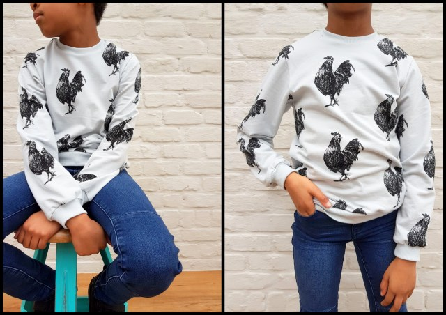 rooster sweater (college)