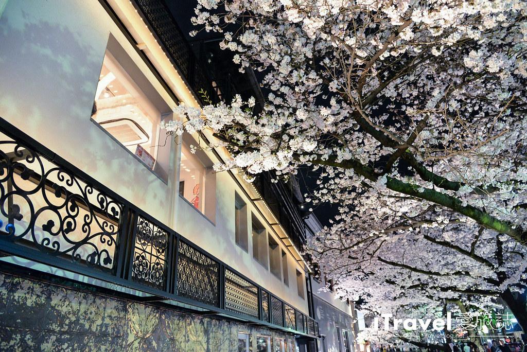京都赏樱景点 祇园白川 (36)