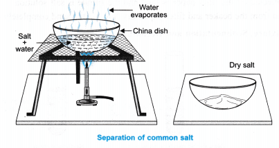 ncert-class-9-science-lab-manual-separation-of-mixture-5