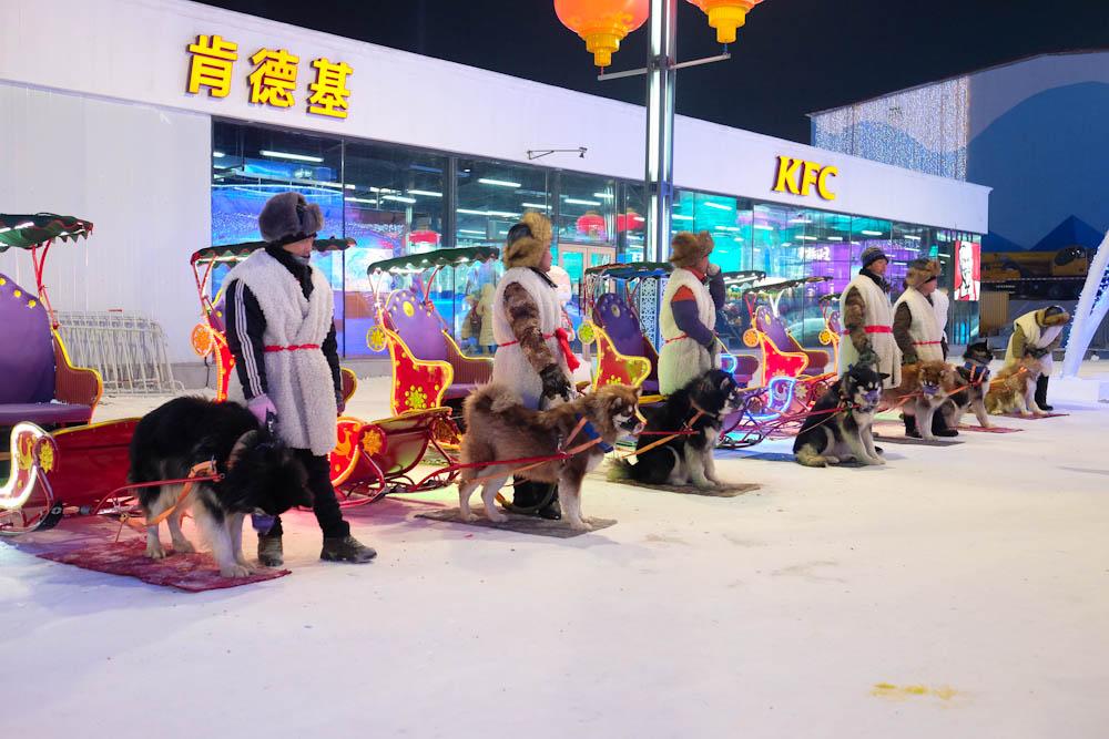 Harbin Ice Festival -26